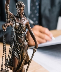 Rechtsanwälte in Zürich für internationale Migration - Peters Vereinigte Anwälte